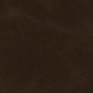 Image of Aged Mocha Leather