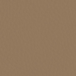 Image of Dark Beige Reclaimed Leather
